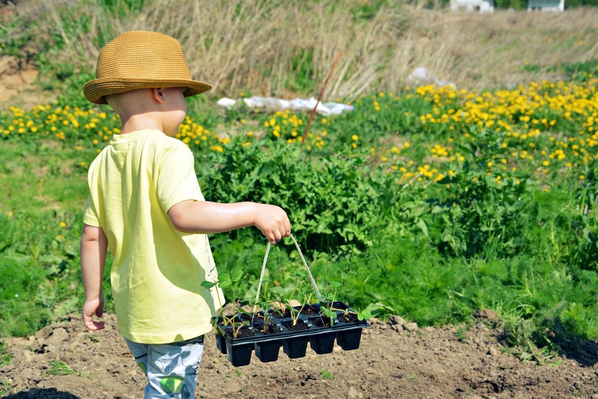 ogródek z dziećmi
